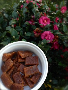Two Ingredient Fudge