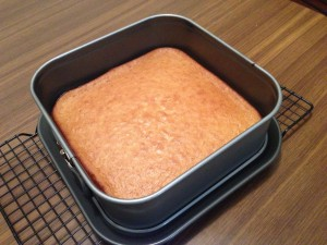 Lamington Cake Tin