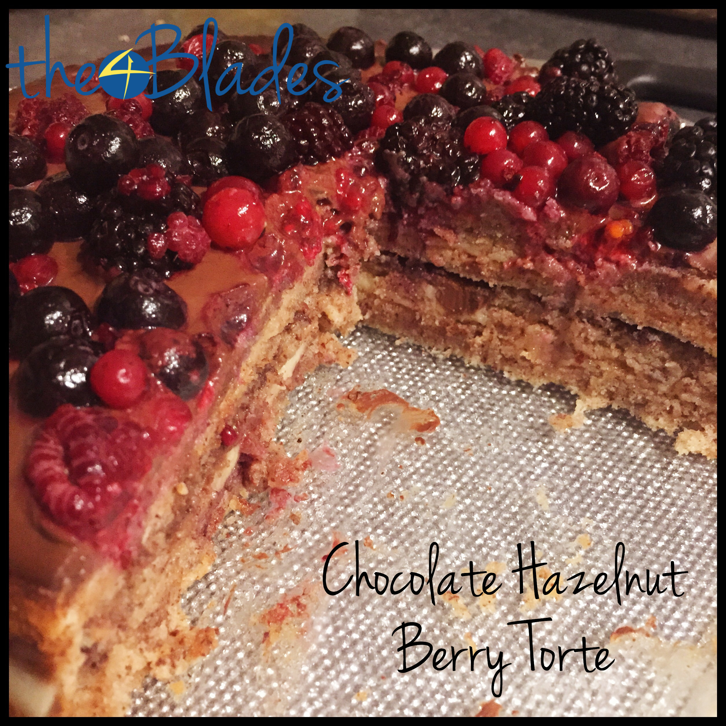 Chocolate Berry Hazelnut Torte Thermomix