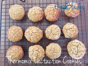 Thermomix Lactation Cookies