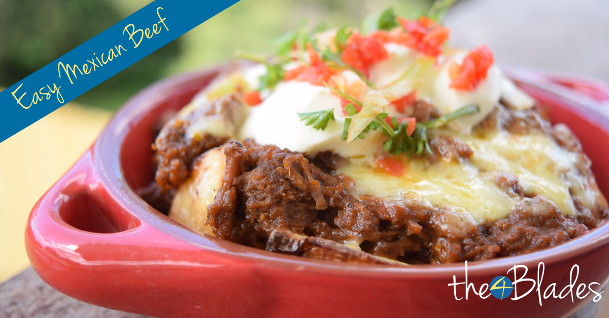 easy mexican beef thermomix recipe