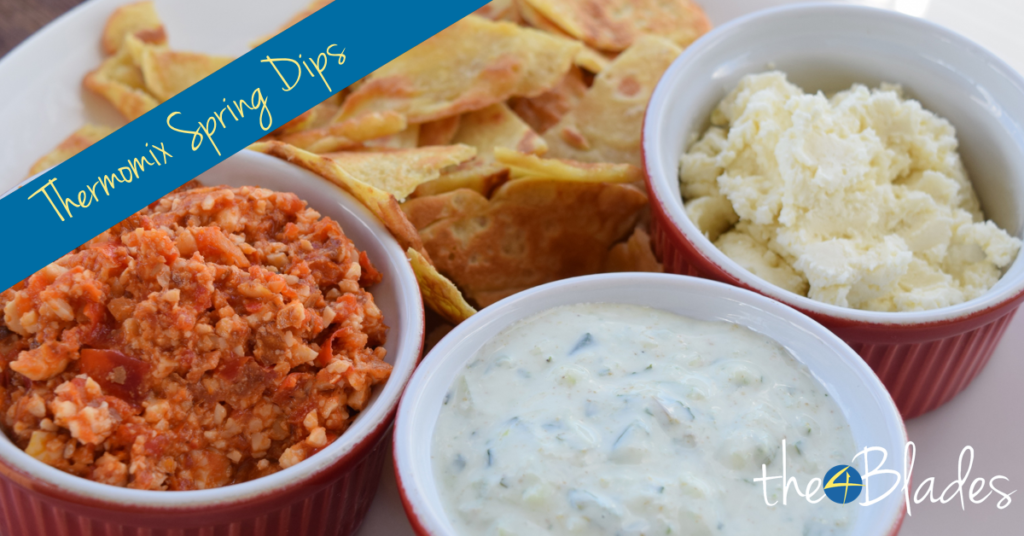 best-thermomix-dip-recipes-005