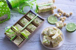 Macadamia-Lime-Fudge-Thermomix-Recipe