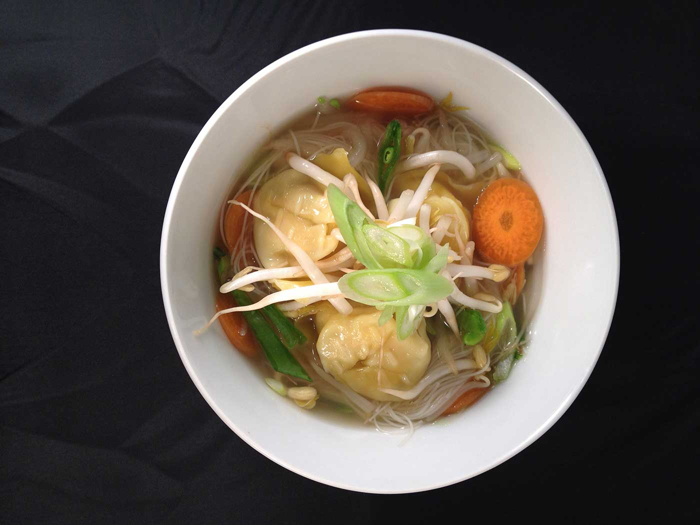 Chicken-Wonton-Noodle-Soup-Thermomix-Recipe