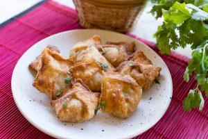 Chicken-and-Coriander-Crispy-Wontons-Thermomix-Recipe