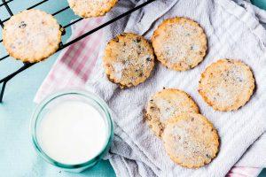 Garibaldi-Biscuits-Thermomix-Recipe